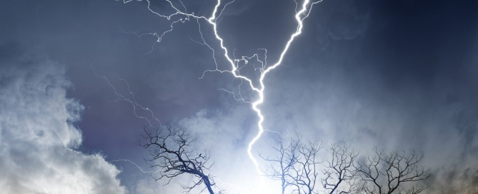 tree-care-storms-669x272