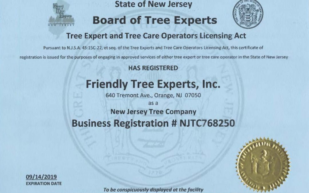 Benefits of Hiring a NJ Board of Tree Experts Registered Business