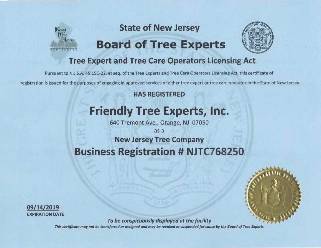 NJ-Tree-Expert-and-Tree-Care-Reg-NJTC768250